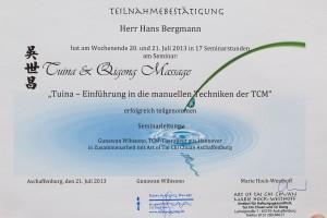 Tuina Qigong Massage Zertifikat